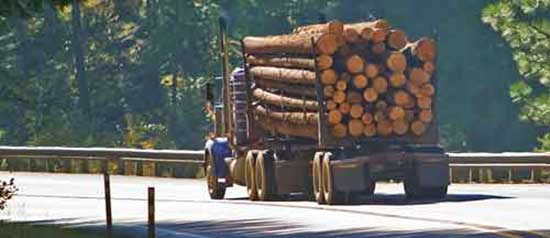 A logging truck heads down a mountain road