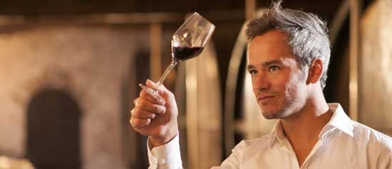 A winemaker studies a glass of wine