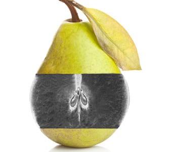 xray-pear