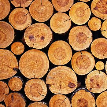 biofuel-woodybiomass