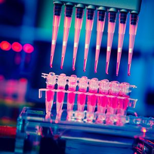 Pipettes feed a medium into test tubes used in cancer research
