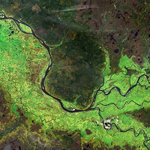 A river tributary as seen from space