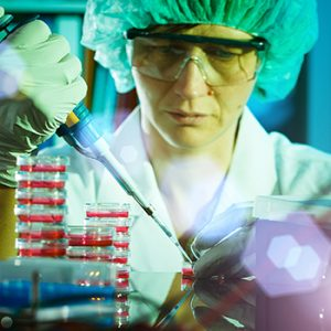 A researcher pipes fluids into a petri dish