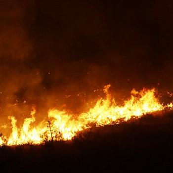 wildfires - AP photo