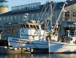 Fishing boats lay dockside at Fishermens Terminal in Seattle's Ballard neighborhood.