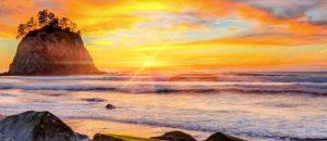 The Washington Coast near La Push is bathed in golden sunset.