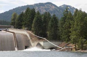 A salmon cannon shoots fish over a dam so it can spawn.