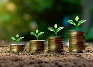 Small plants grow out of coinage, representing second-stage business growth.